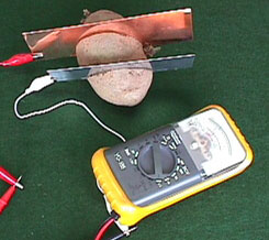 HOWSTUFFWORKS QUOTHOW TO MAKE A POTATO POWERED LIGHT BULBQUOT